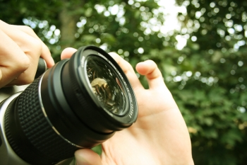 מצלמים-תחרות צילום ישיבתית